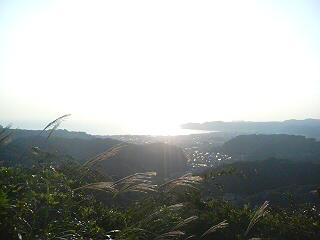 衣張山(鎌倉市)