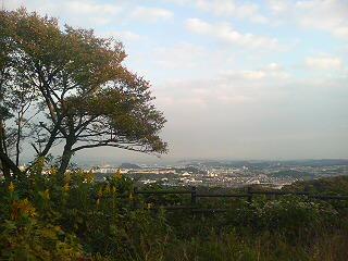 円海山・大丸山(横浜市)